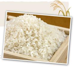 あきたこまち米麹をたっぷり使用